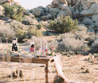 Elegant desert wedding in Joshua Tree