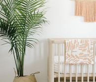 California inspired nursery