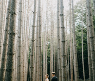 Rustic Pine forest wedding at The Roxbury Barn & Estate