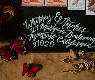 Black wedding envelopes with calligraphy