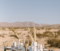 Modern minimalist earth tone wedding in the desert