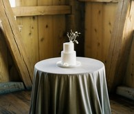 sweet petite winter wedding cake