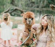 Rainbow alpaca girl's birthday party for twins