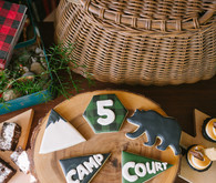 Camp themed sugar cookies