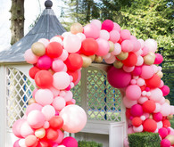 Pink balloon arch