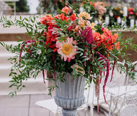 coral charm peonies at ceremony