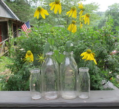 Barn Wedding -  Four Vintage Milk Bottles/ Vases