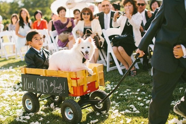 Radio flyer wedding