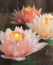 DIY paper flower luminaries