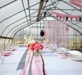 Two Sisters Event Design