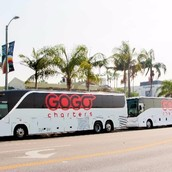 GOGO Charters