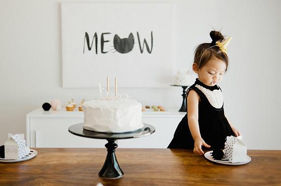 Kitten 2nd Birthday Party
