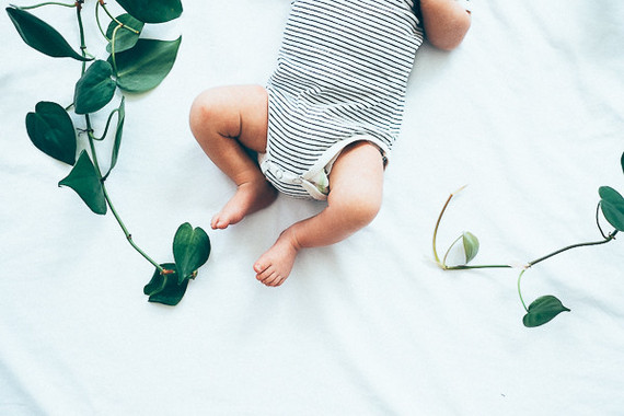 boy newborn photos with vine