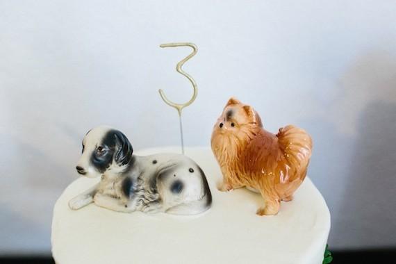 doggy cake