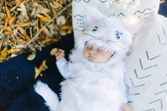 baby kitty costume