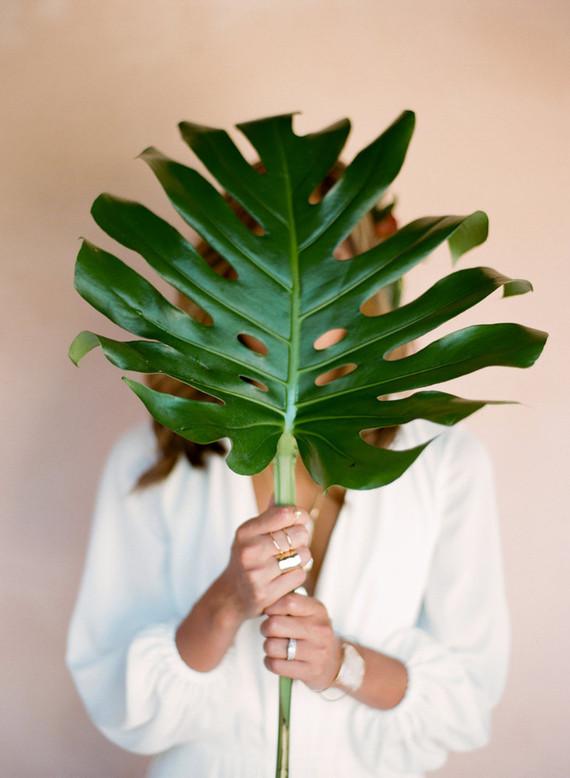 Fig leaf decor
