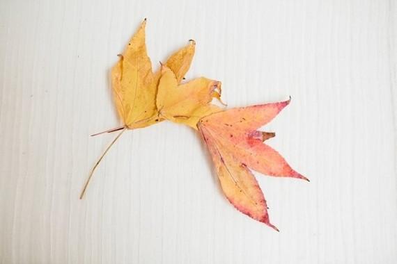 DIY fall leaf crown