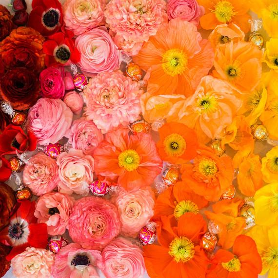 ombre rainbow flowers