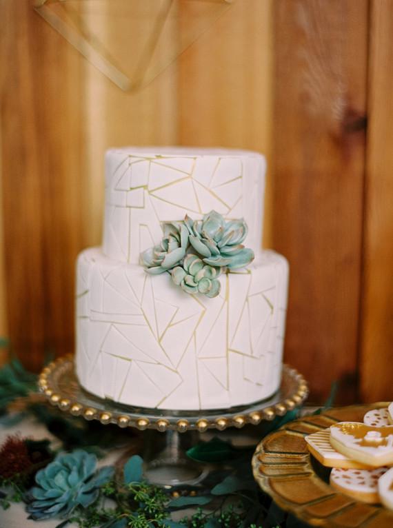 geometric succulent cake