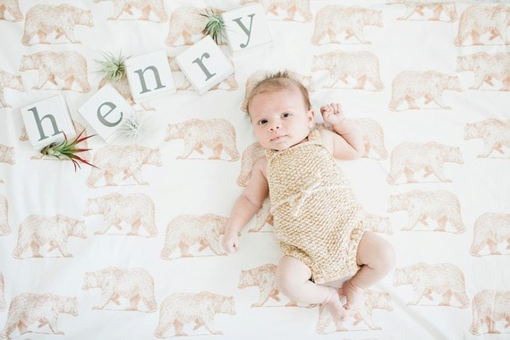 wild and free boy nursery