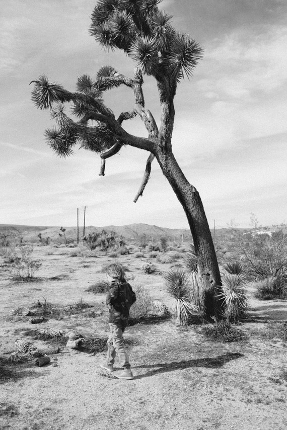 Joshua Tree family vacation