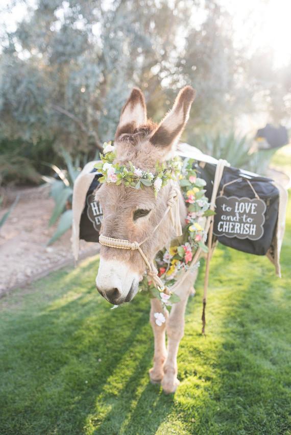 Elegant Desert Dream Wedding