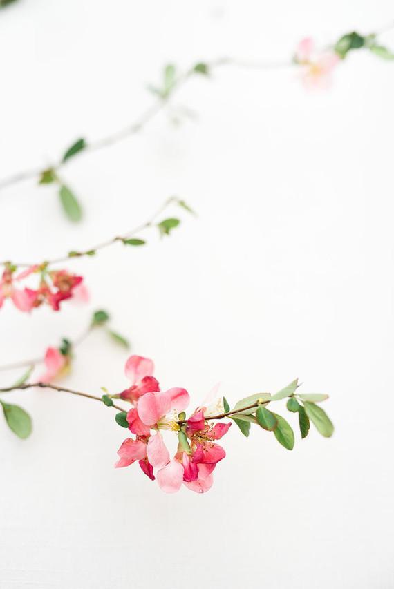 Peach bouquet recipe
