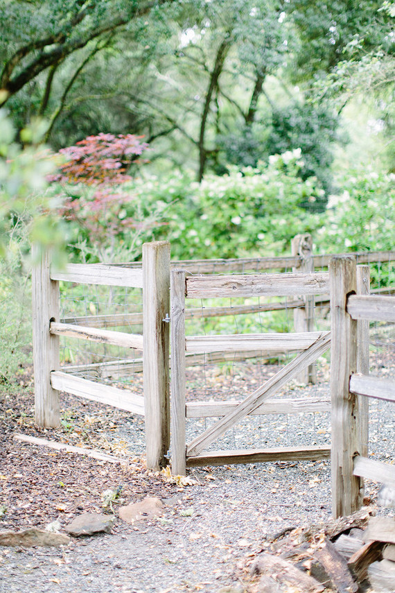 intimate elopement in Sonoma