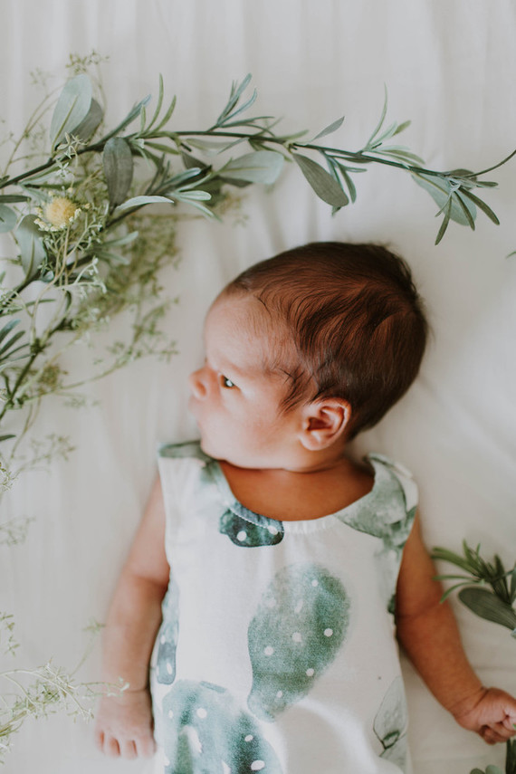 Cactus inspired nursery and newborn photos