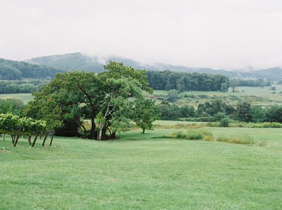 Pippin Hill Farm maternity photos
