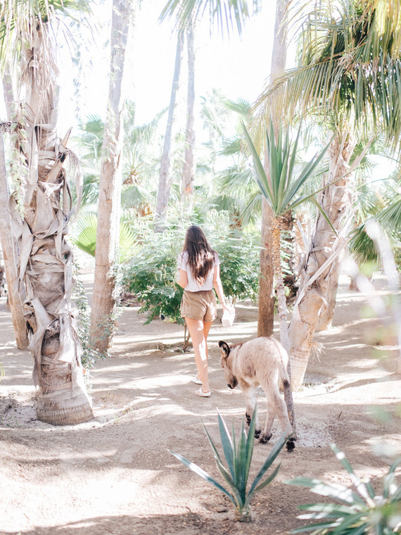 The ultimate itinerary for a honeymoon in Cabo / Acre Baja