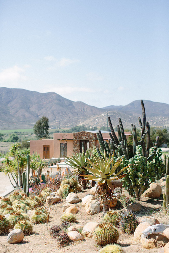 An insider's guide to the Guadalupe Valley in Baja on 100 Layer Cake