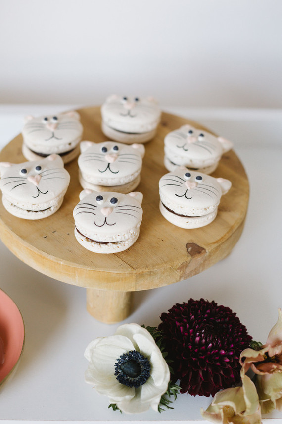 A modern kitty cat party for National Cat Day