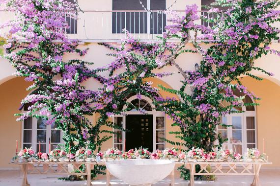 bougainvillea wedding backdrop