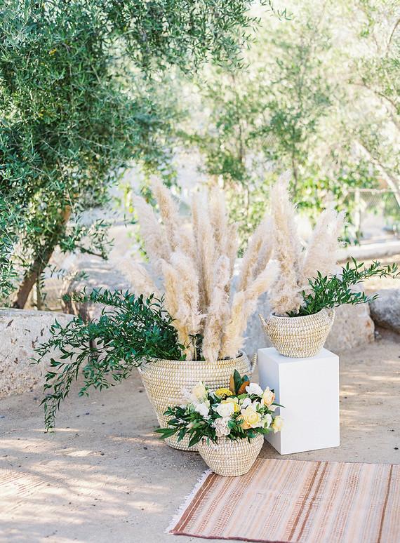 Pampas grass for wedding