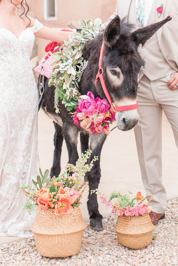 Southwestern elopement with a donkey