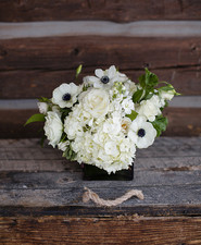White Anemone florals