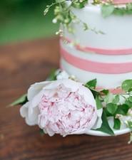 Pink garden baby shower cake