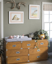 Jungle book themed nursery ideas