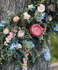 protea floral installation