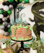 succulent dinosaur cake