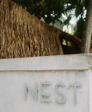 Nest Tulum