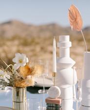 Modern minimalist earth tone wedding in the desert
