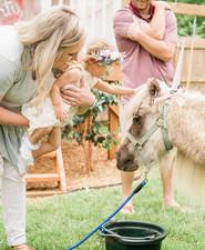 Pastel unicorn birthday party ideas