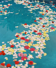 floating flowers in pool