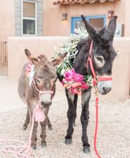 Southwestern wedding