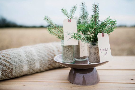 Pine Tree Wedding Favor Wedding Amp Party Ideas 100