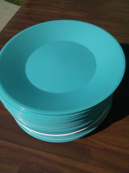 Real Weddings And Wedding Inspiration Ideas Teal Heavy Duty Reusable Plastic Plates 100 Layer Cake